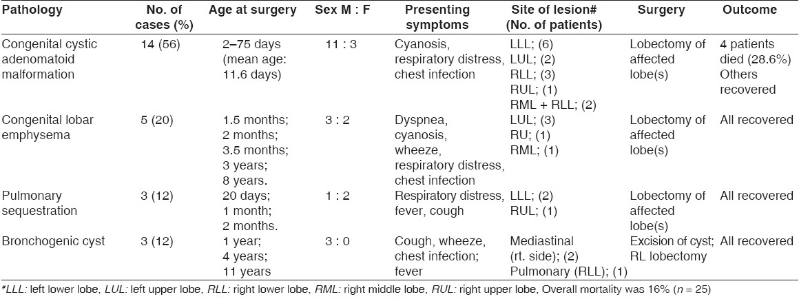 Table 1: Congenital lesions, number, sex distribution, age of patients at surgery, presentation, site of lesion, surgery, and outcome (n = 25)