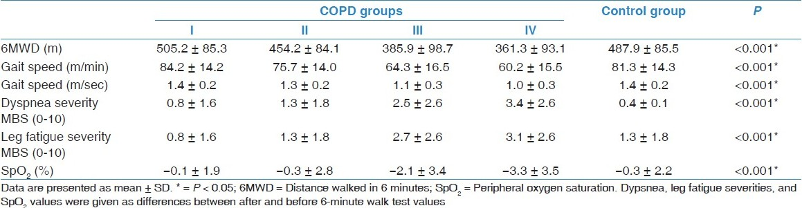 Gait speed as a functional capacity indicator in patients with ...