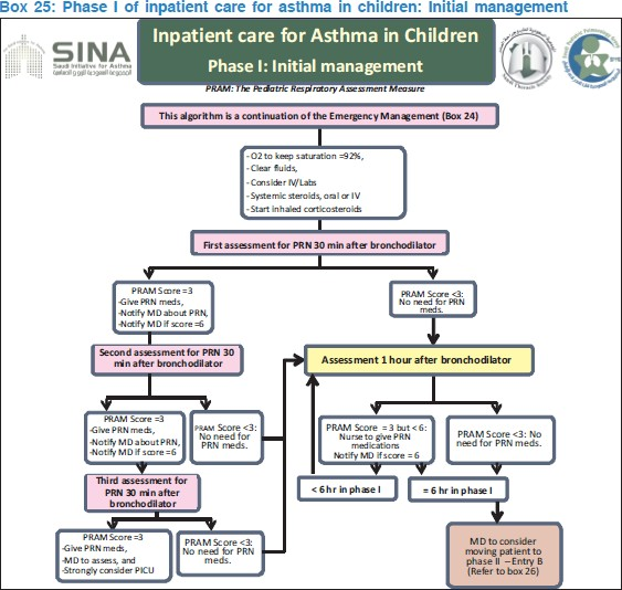 The Saudi initiative for asthma - 2012 update: Guidelines