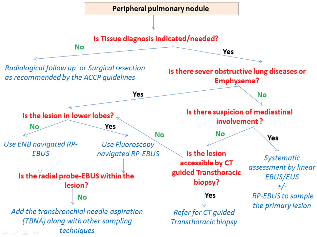 Gaining access to the periphery of the lung: Bronchoscopic and ...